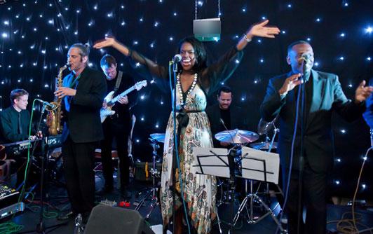 My Fabulous Wedidng Band